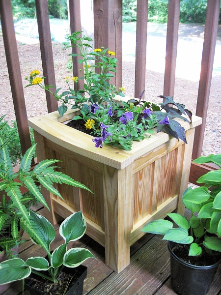 A nice project: a garden planter made of cypress.