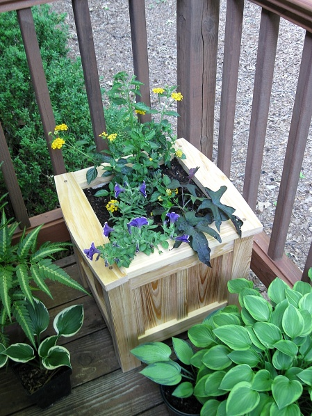 The moderate size of the planter helps it fit almost anywhere.